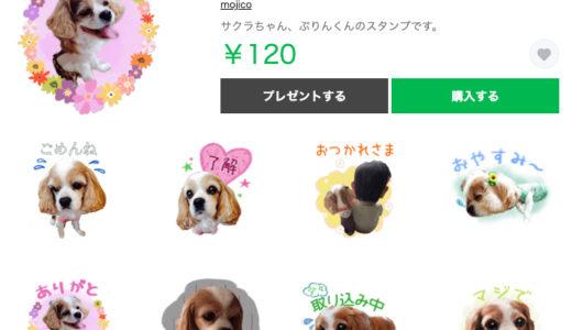 【キャバリアちゃん】LINEスタンプ